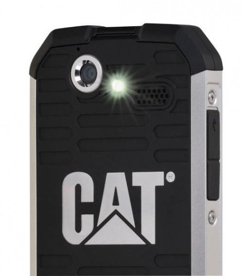 CatB15Q