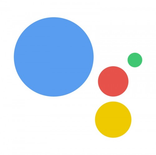 google assistant wpadka