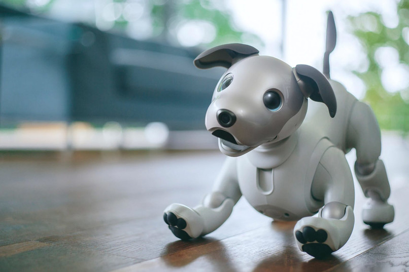 Robota aibo – nowy produkt Sony 2
