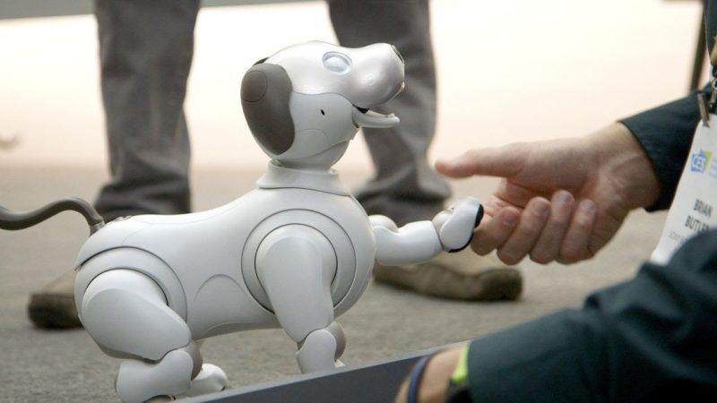 Robota aibo – nowy produkt Sony 3