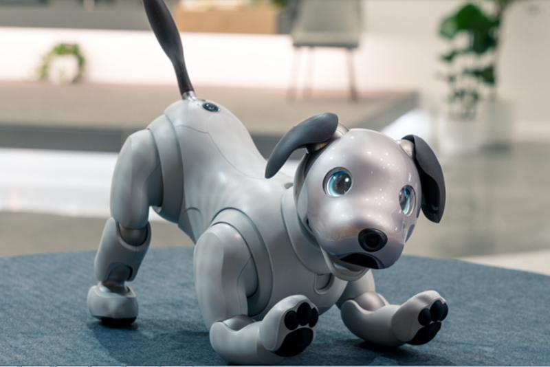 Robota aibo – nowy produkt Sony 1
