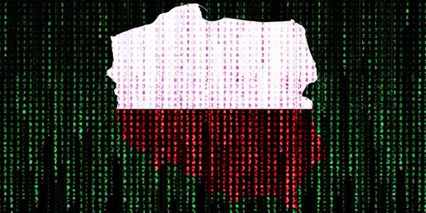 Polska cyfrowa – to działa