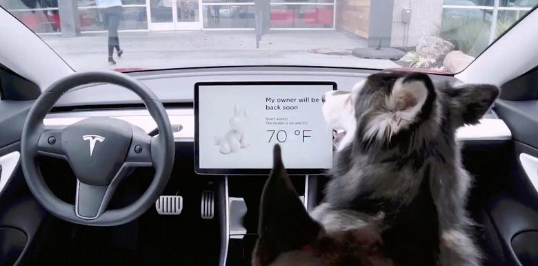 """Tesla dodała do swoich samochodów """"Dog mode"""""""