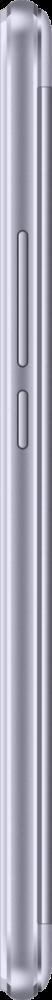 TX 01 Lavender 2
