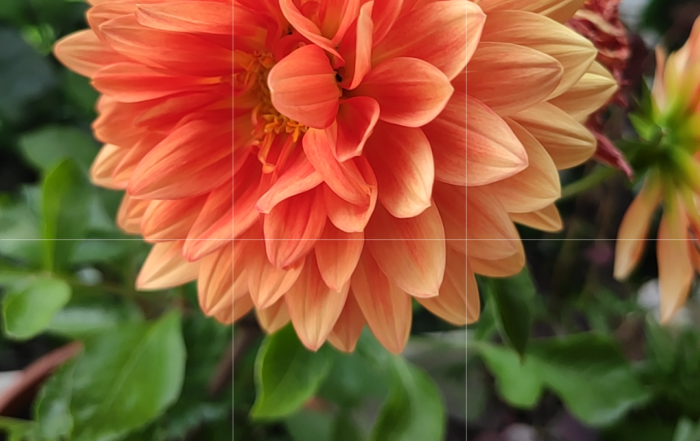 Screenshot 2019 06 02 17 14 18 273 com.android.camera