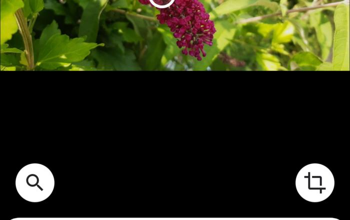 Screenshot 20190710 194521