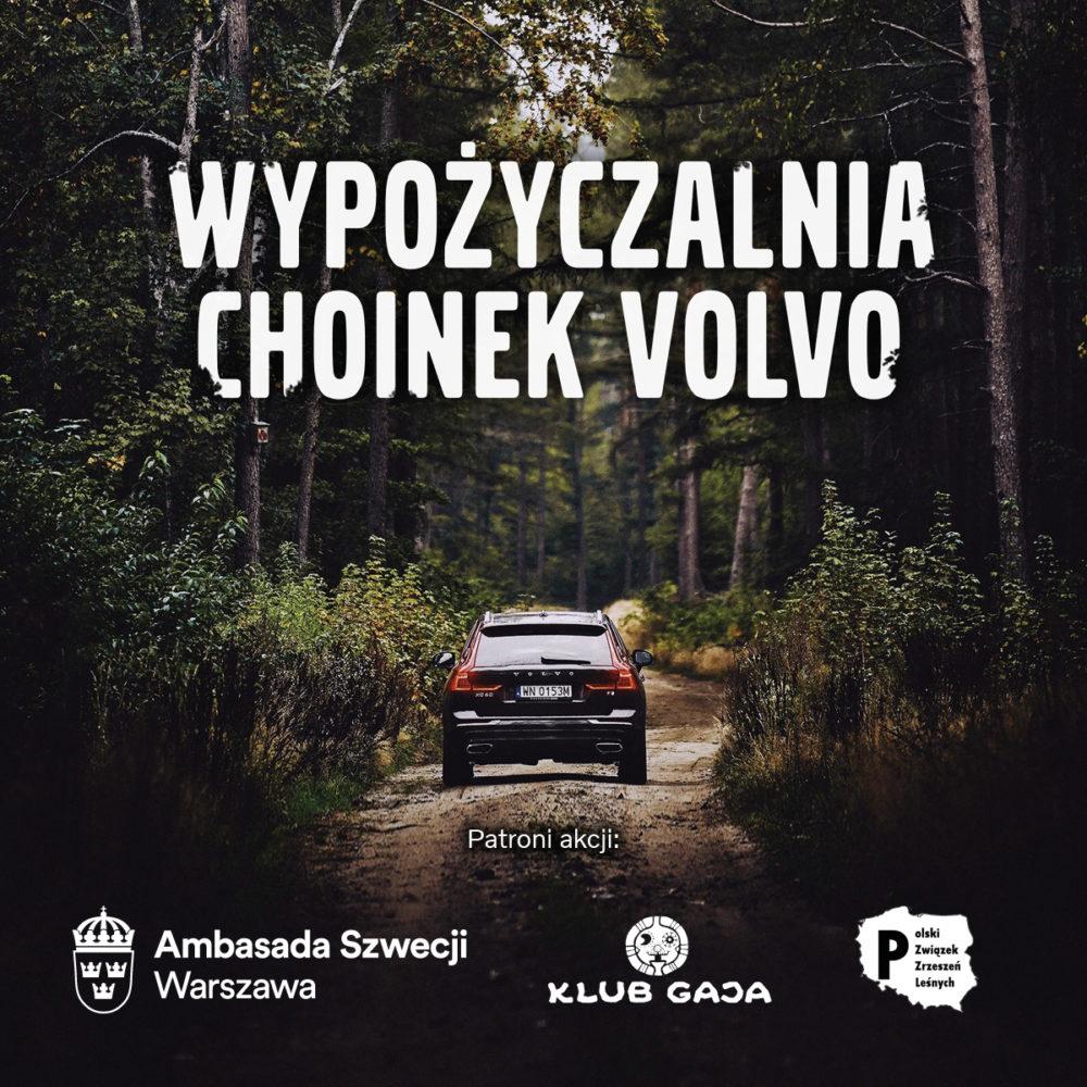 VOLP Choinka 2019 Patroni 1200x1200px