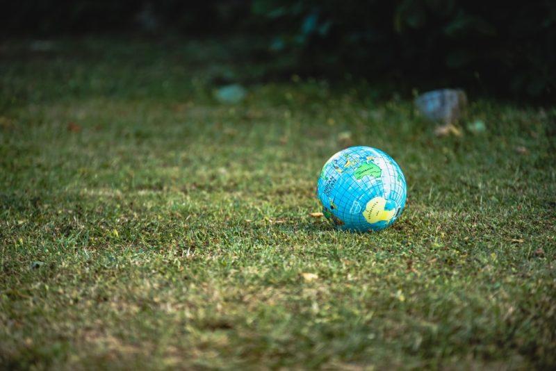 Bank BNP Paribas uczestnikiem kolejnej edycji programu Climate Leadership