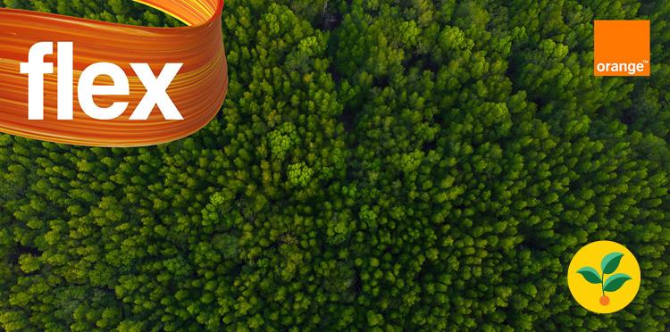EKO GB w Orange Flex – zebraliśmy już ponad 45 000 GB