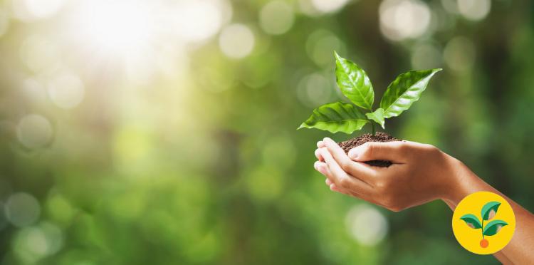 Umowa bez papieru oszczędza drzewa