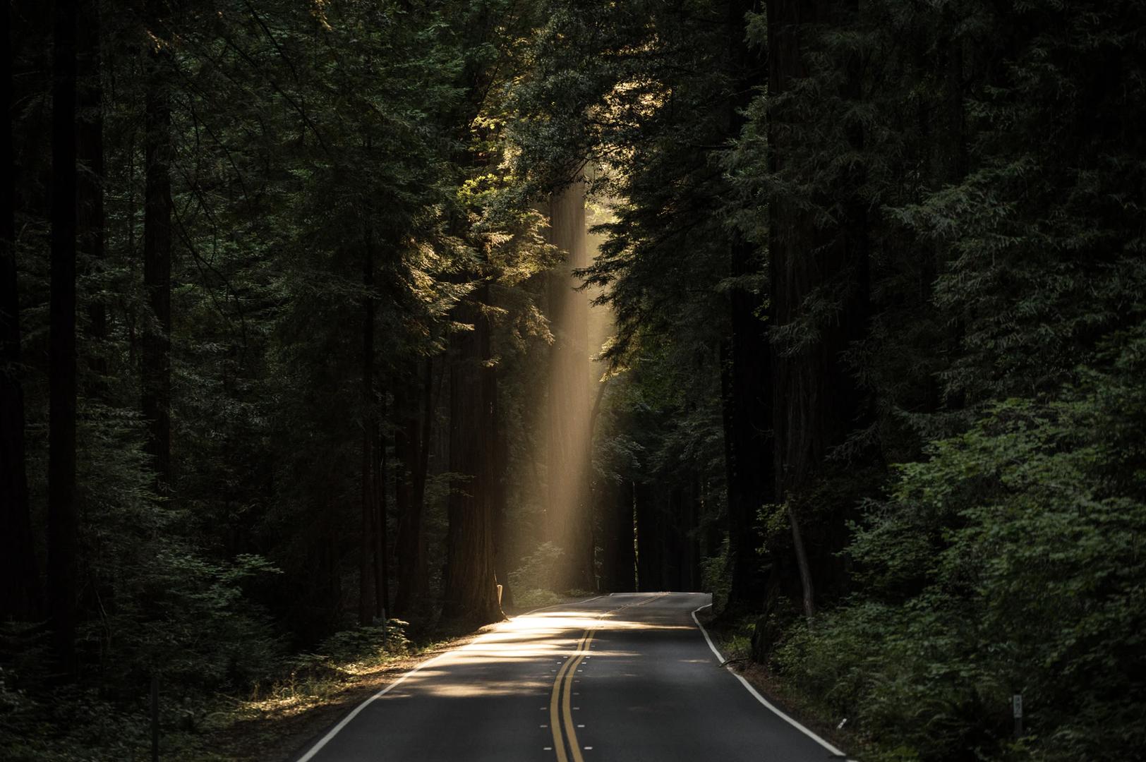 W ORLEN Asfalt powstaje ekologiczny asfalt do budowy dróg