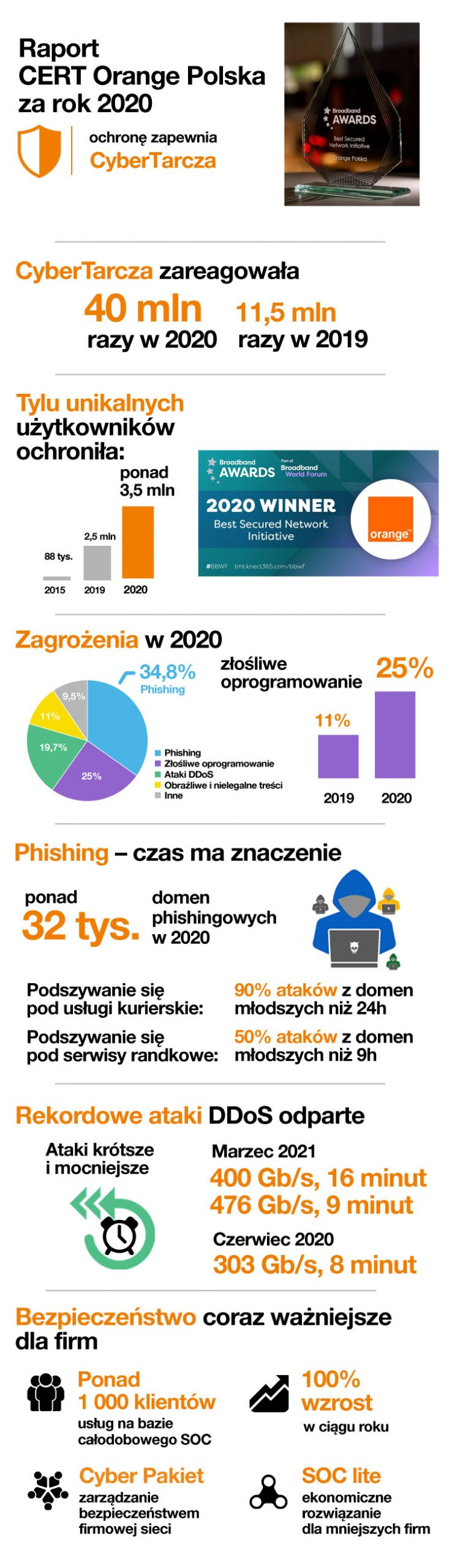 raport cert 2020 scaled