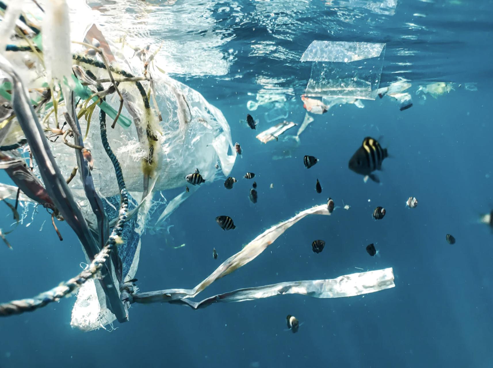 Z okazji Światowego Dnia Środowiska LG ogranicza ilość plastiku