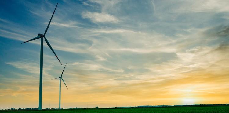 Orange Flex pierwszą w Polsce usługą telekomunikacyjną neutralną dla klimatu